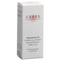 Ceres rosmarinus recens...