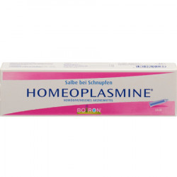 Homéoplasmine ong 40 g